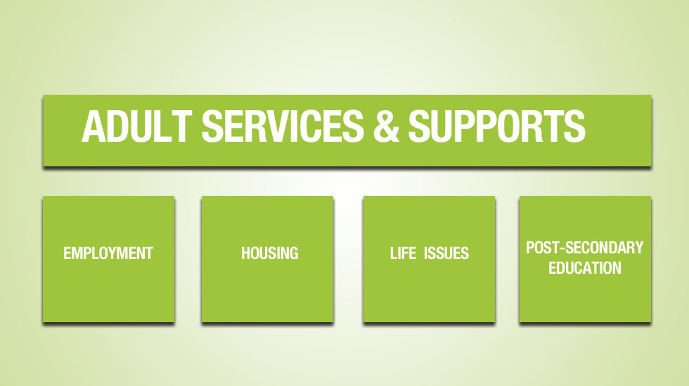 aaom_web_adult_services