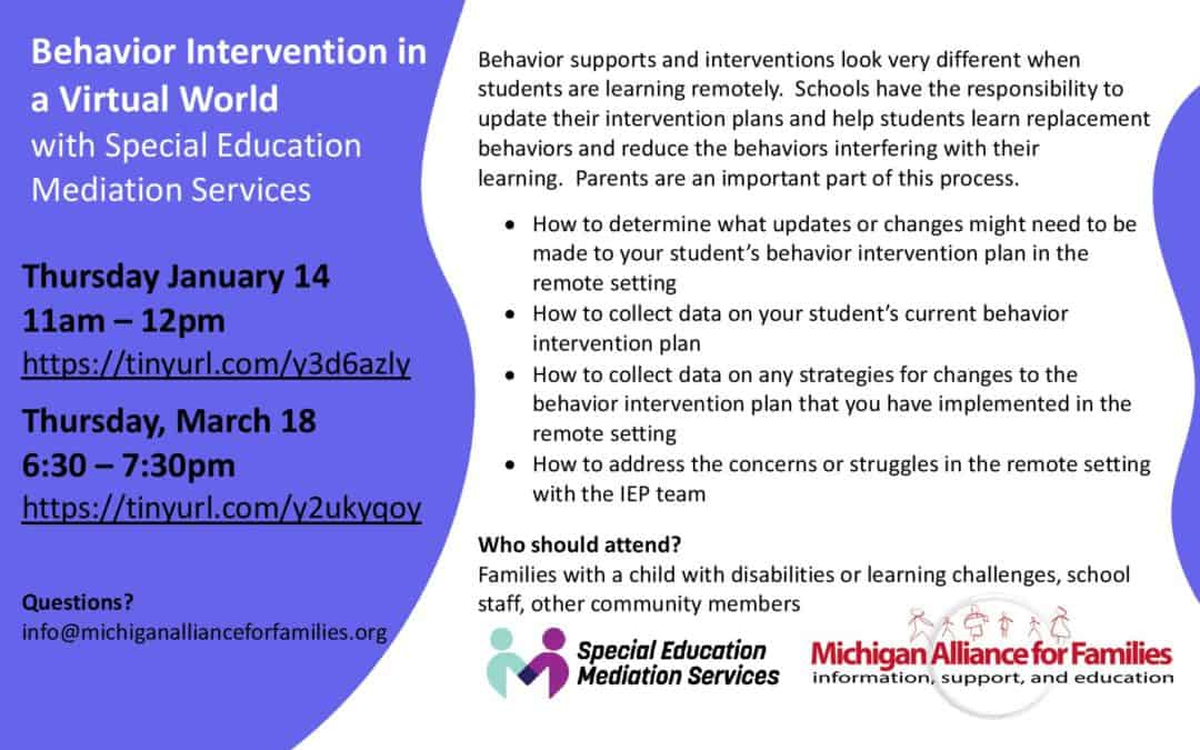 Behavior Intervention in a Virtual World with Special Education Mediation Services